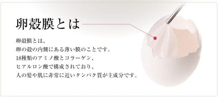 卵殻膜とは